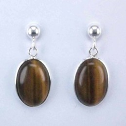 Earring Oval Tiger Eye Stone