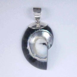 Pendant Turtul  30x32mm....