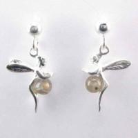 Earrings Labradorite Stone